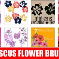 100+ Free Hibiscus Clip Art Photoshop Brushes