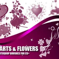 21 Heart Shapes and Flower Photoshop Brushes