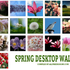 22 Spring Desktop Wallpapers Inspired by Nature