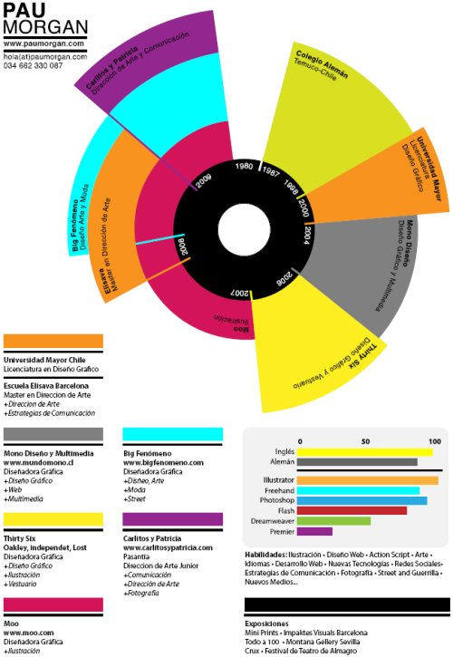 Infographic Resume  Infographic Resume Examples