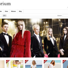 16 Premium E-commerce WordPress Themes