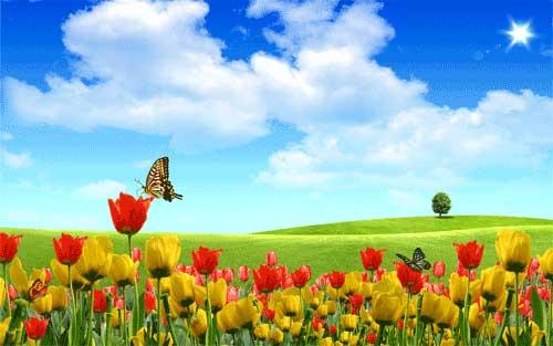 spring desktop wallpapers