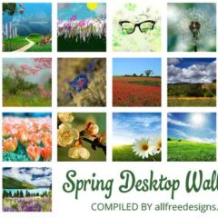 20 Spring Desktop Wallpapers for Your Inspiration