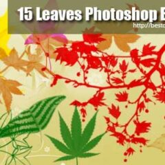 300+ Free Autumn Leaves Clip Art Photoshop Brushes