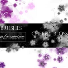 20 Beautiful Japanese Brushes for Photoshop
