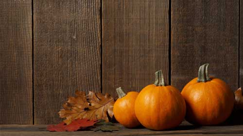 Thanksgiving Wallpapers 25 Free Desktop Backgrounds