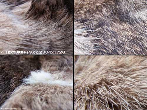fur textures