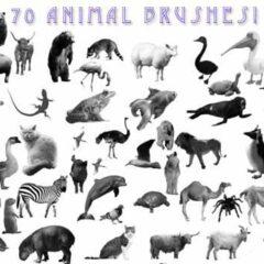 600+ High-Quality Animal Photoshop Brushes