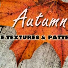 150+ Fall Backgrounds: Textures and Patterns