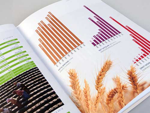 annual report designs