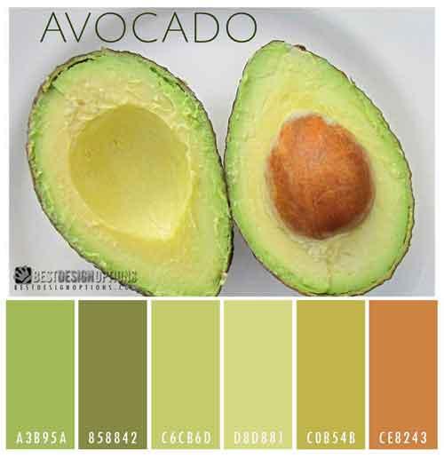 Bright Color Palettes