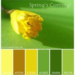 Spring Color Palettes: Floral Inspiration