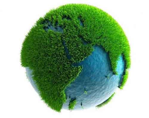 Дальневосточная Агрохимическая Компания