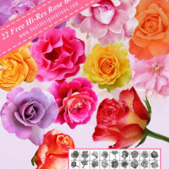 22 Free Beautiful Rose Photoshop Brushes