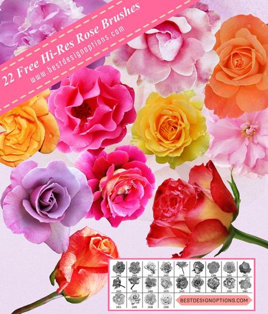 rose photoshop brushes