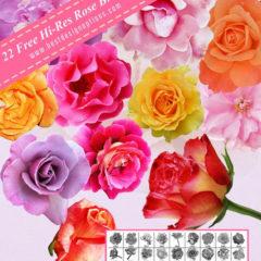 22 Free Beautiful Rose Photoshop Brushes