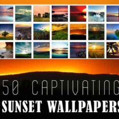 50 Free Captivating Sunset Wallpapers for Your Desktop