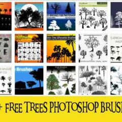700+ Tree Photoshop Brushes for Nature Designs