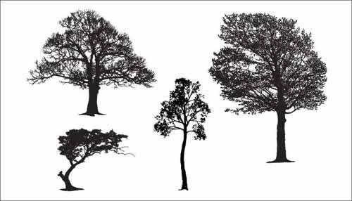 tree vector 500 free editable illustrations to download rh allfreedesigns com three vectors tree vector pattern
