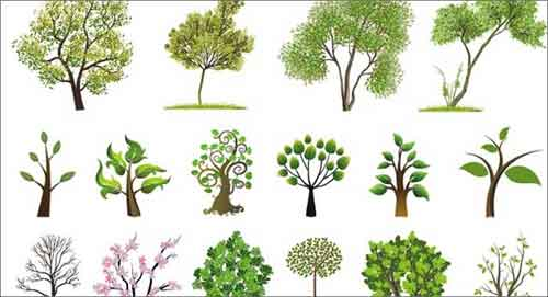 Tree Vector: 500+ Free Editable Illustrations to Download
