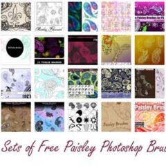 26 Sets of Free Paisley Photoshop Brushes to Download