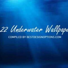 22 Amazing Underwater Wallpapers for Your Desktop