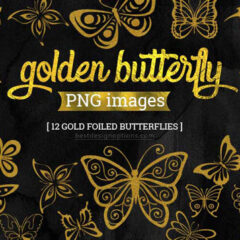 12 Free Butterfly Photoshop Brushes + PNG Images