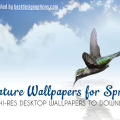 50 Free Nature Wallpapers Featuring Landscapes and Flowers