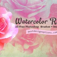 23 Rose Clip Art Graphics: Watercolor-Textured PNGs + PS Brushes