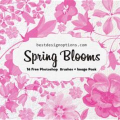 Spring Flowers Clip Art Brushes and PNG Images