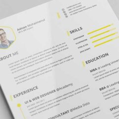 40 Resume Template Designs in Editable Formats