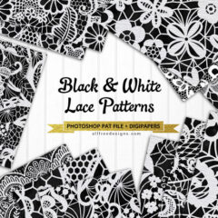 12 Beautiful Lace Patterns in Black and White