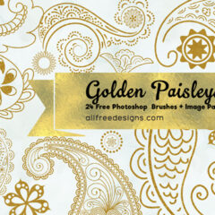 24 Paisley Design Photoshop Brushes + PNG Image Pack