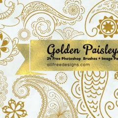 24 Paisley Design Photoshop Brushes + PNG Image Pack