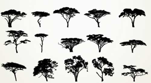 Tree Photoshop Brushes For Nature And Summer Themed Designs