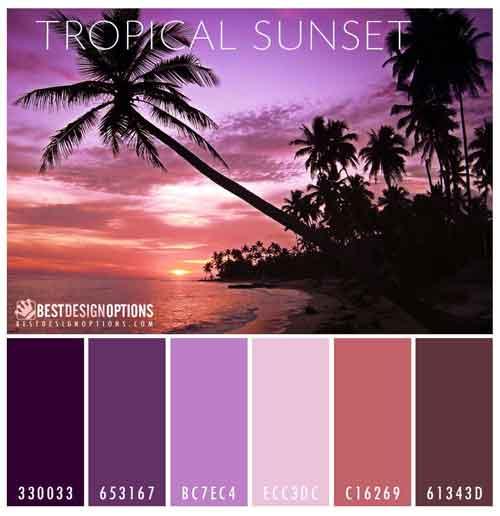 Tropical Beach Color Palette: Summer Colors: Cool Palettes For Summer Designs