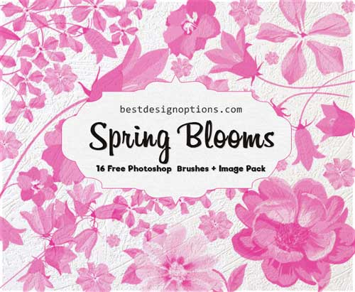 Spring flowers clip art brushes and png images spring flowers clip art mightylinksfo