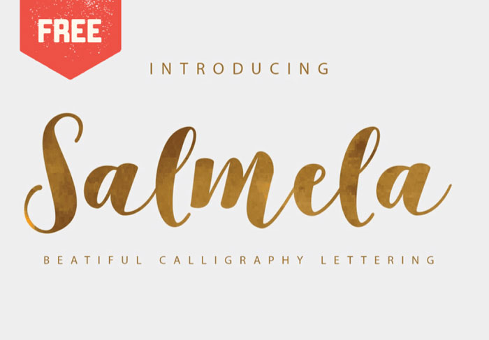Free Feminine Fonts 12 Of The Best Typefaces For Your Designs