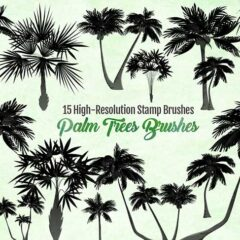 Palm Tree Brushes 15 Images For Creating Tropical Themed