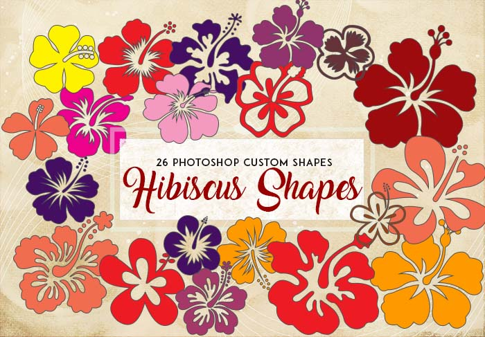 Hibiscus Flower Shapes: 26 Vector Silhouettes for Logos and Drawings